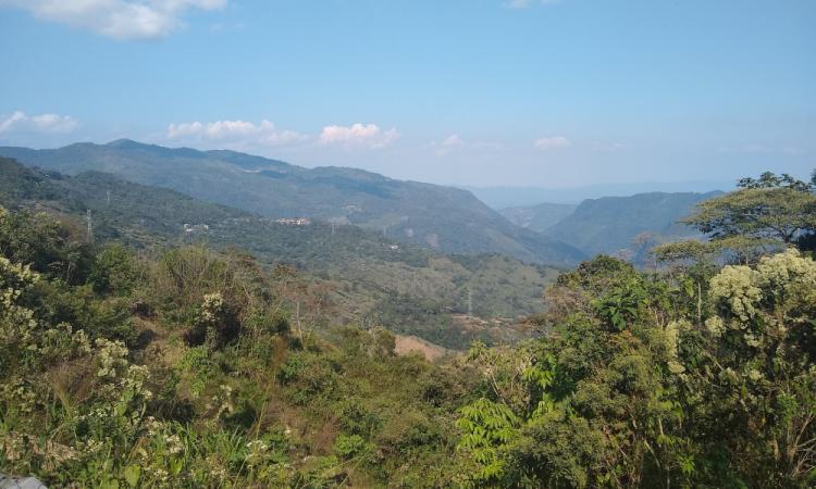 Sierra Negra de Puebla en crisis por Coronavirus