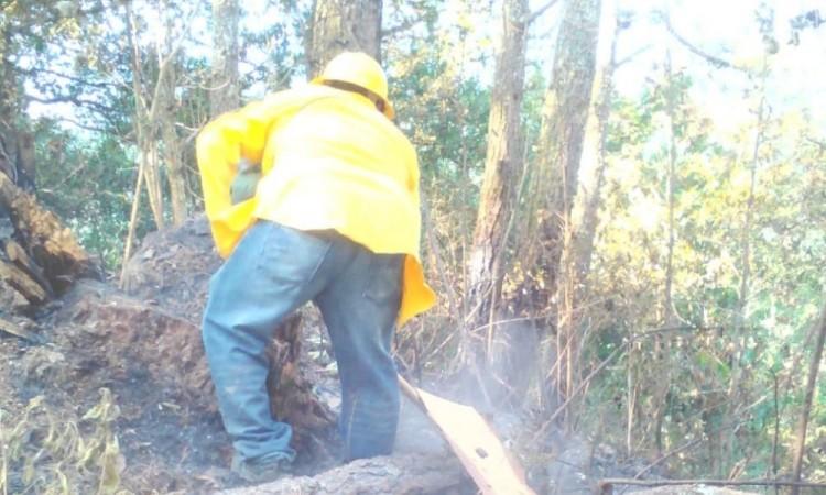Van 15 incendios forestales en Huauchinango durante el año