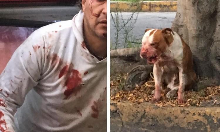 Atlixquense es atacado por Pitbull abandonado