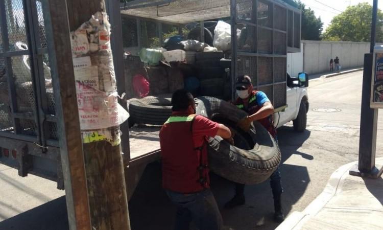 Se registran 22 casos de dengue en Tehuacán en los últimos 15 días
