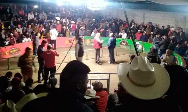 Hacen palenque clandestino en Acatzingo en plena pandemia