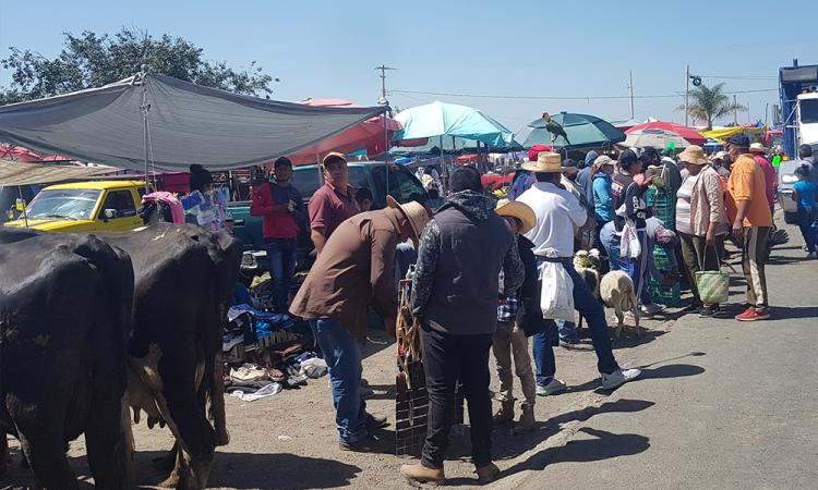 Tianguis 4 caminos sobrepasa a autoridades en Calpan en plena pandemia