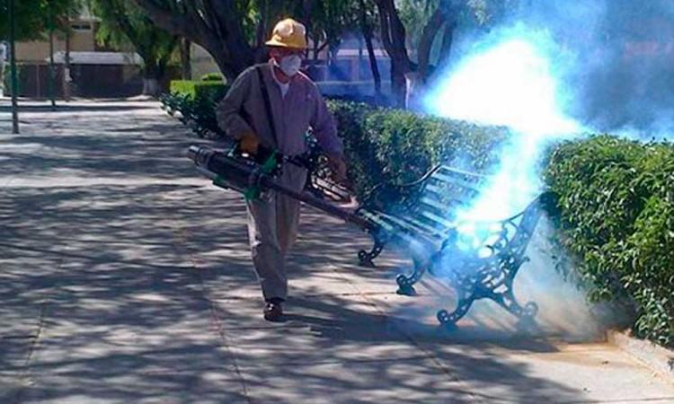 Teme Aljalpan brote de dengue en medio de pandemia de Covid-19