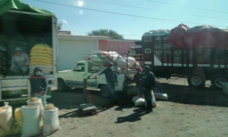 Los habitantes de Santiago Alseseca denunciaron el caso.