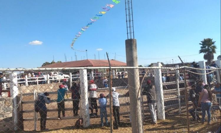 ¿Por qué no se cuidan? Protección Civil de San Andrés Cholula cancela jaripeo
