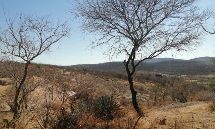 El calor recrudece en el estado, sobre todo en los municipios mixtecos