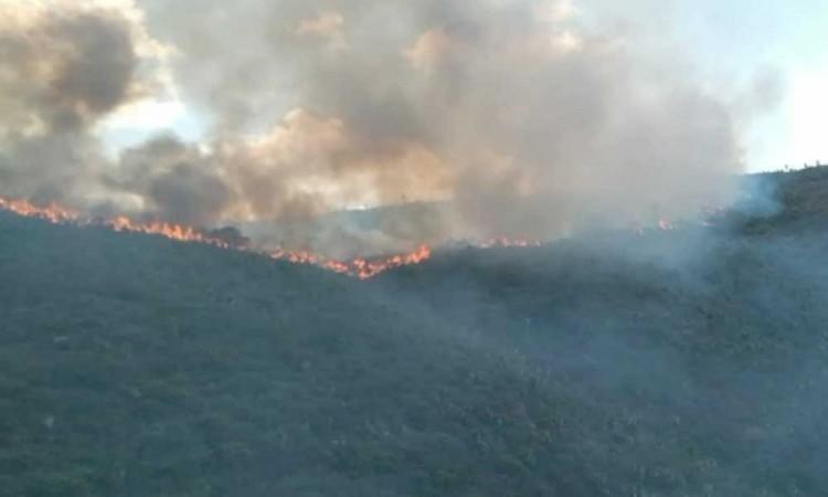 Devasta incendio activo en Tlacotepec y Juan N. Méndez más de 300 hectáreas