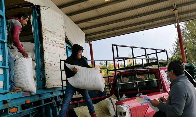 Alcaldesa de Tepexi subsidia insumos agrícolas para más de 900 productores