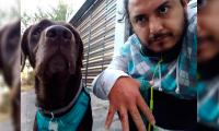 Pitbull ataca a deportista y mascota en Atlixco