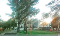 Talarán árboles del Infonavit Cholula para convertirlo en estacionamiento, denuncian