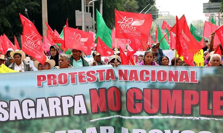 Protestarán campesinos contra Sagarpa