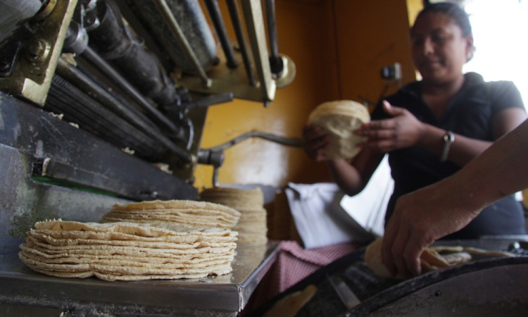 Sin fundamento, aumento de la tortilla: SE