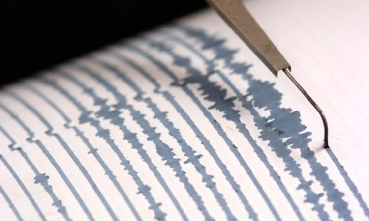 Suman 590 réplicas por sismo magnitud  7.2