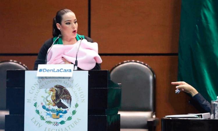 Senadora fue víctima de comentarios misóginos por subir a tribuna con bebé