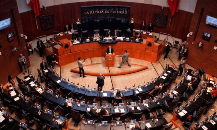 Senado de la República debatirá regulación de cannabis