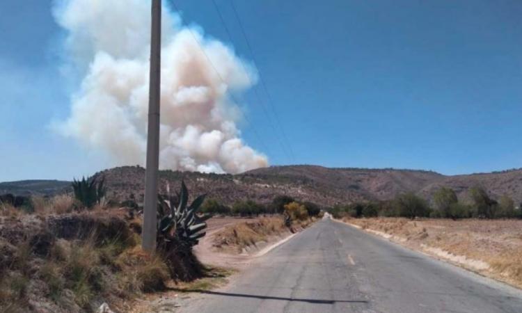 Aumenta a 77 el número de incendios forestales en 20 estados