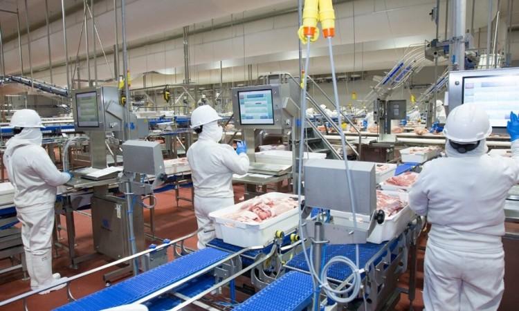La salud de nuestros trabajadores es prioridad: Granjas Carroll