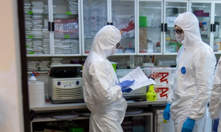 Mexicanos descifran genoma de virus generador de COVID-19
