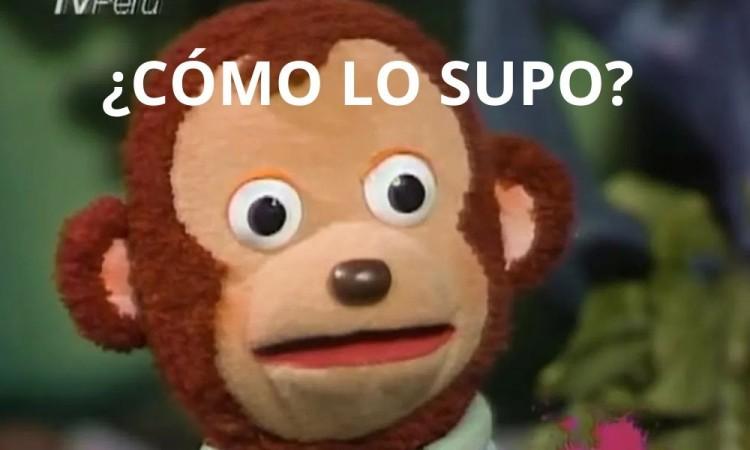 ¿Te gustan los memes?, la Secretaría de Cultura pagaría 2 mil pesos por ellos