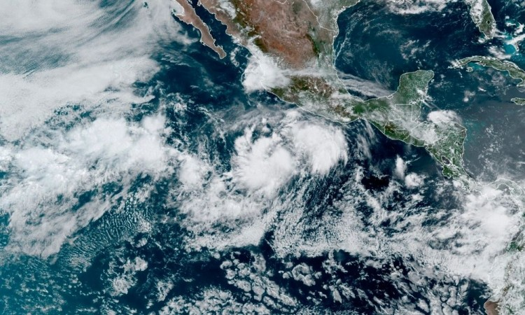 Cristina se desarrolló a partir de la depresión tropical 5-E al sur de las costas del estado de Guerrero.