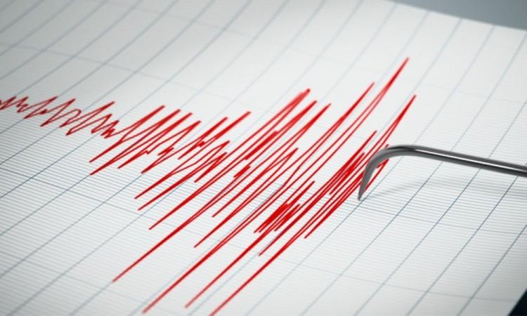 Se registra sismo de 4.8 el epicentro es en Guerrero