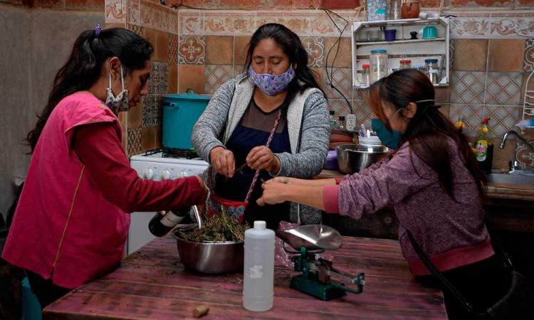 Mujeres indígenas rescatan las plantas ancestrales para combatir el Covid-19 en Chiapas