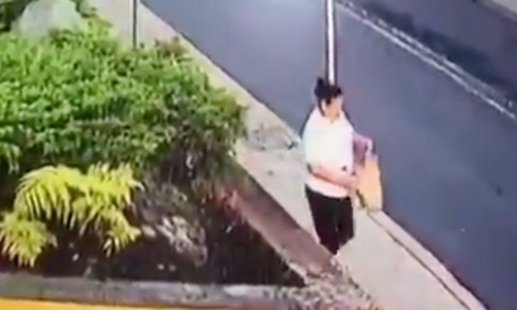 Vídeo: Mujer abandona a un perrito en gasolinera de CDMX