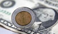 El peso cayó hasta 22 dólares por unidad