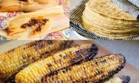 ¡Somos hijos del maíz!  México producirá más de 28 millones de toneladas en 2020