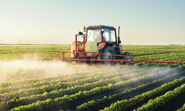 Se restará capacidad al país para lograr la soberanía alimentaria.