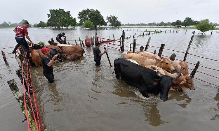 Lluvias y desfogue de presa deja un muerto y casi 600 mil afectados