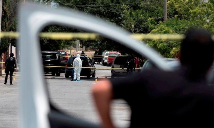 Mueren 14 presuntos sicarios en enfrentamiento con policías en Zacatecas