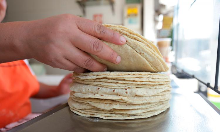 No hay motivo para aumentar el precio de la tortilla en el país: Profeco