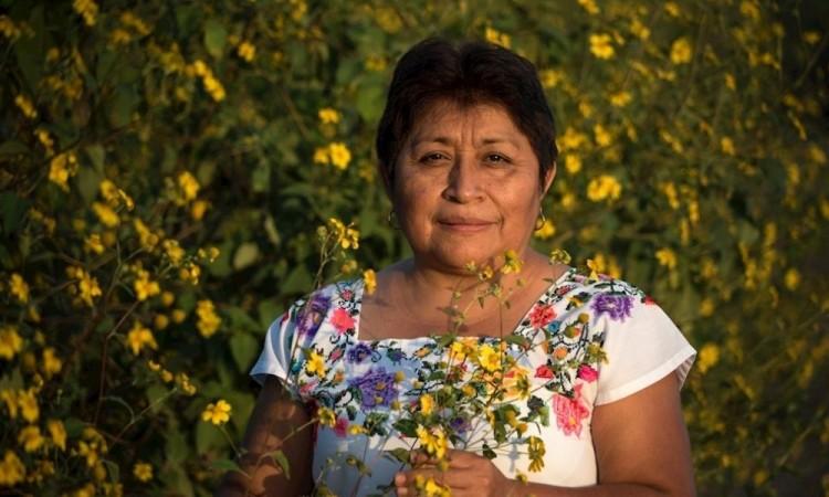 """La """"guardiana de las abejas"""" reivindica la forma de vivir indígena"""