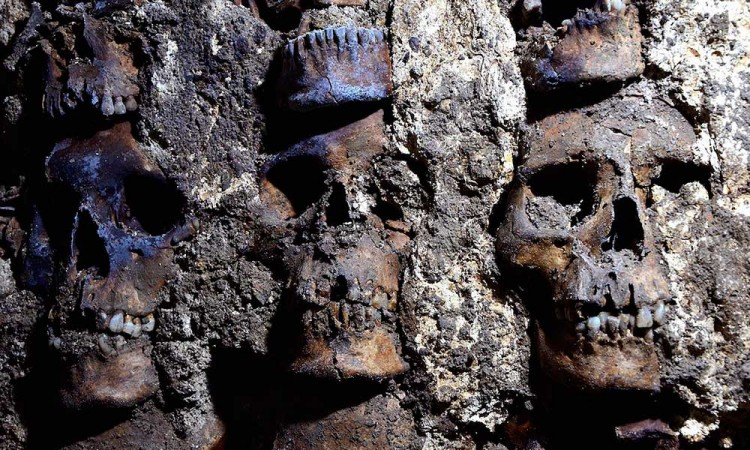 Cráneos, Descubrimiento, Huei Tzompantli, Ciudad de México,
