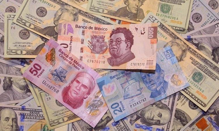 Obligar al Banco de México a llevar a cabo estas operaciones vulnera su autonomía.