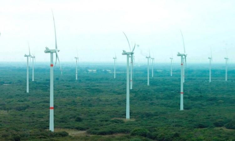 Quieren preservar la estabilidad del sistema eléctrico.