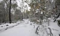 La sexta tormenta invernal y dos frentes fríos amenazan al noroeste de México