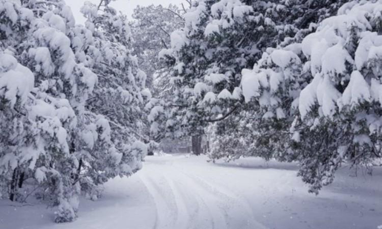 Sexta tormenta invernal y frente frío 30 dejarán ambiente de frío a muy frío y lluvias aisladas sobre el norte y noreste