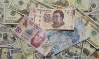 Subastarán otros mil 500 millones de dólares para mitigar crisis económica: Banco de México