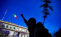 Activistas de marihuana presionan al Congreso mexicano previo a la votación del dictamen que regule su uso recreativo