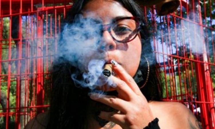 Dudan sobre la regularización de la marihuana y su impacto en el narcotráfico