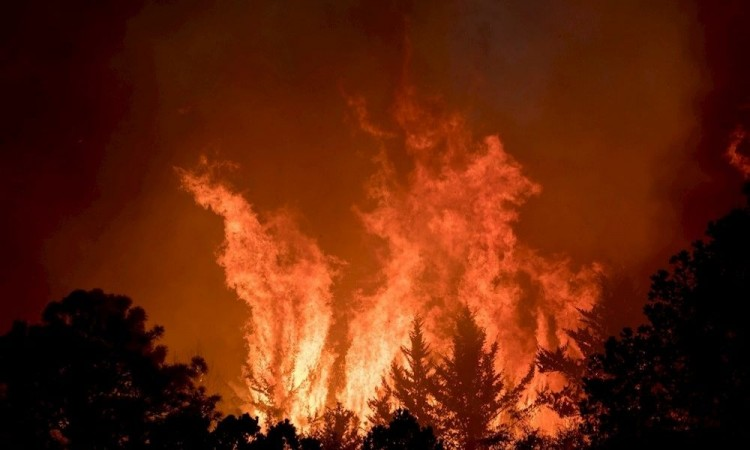 México sufre la peor temporada de incendios forestales en años
