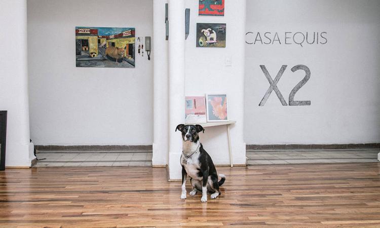 Casa Equis, una galería sin pretensiones que alberga arte emergente en México