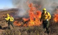 Van 55 incendios forestales activos en México;  dañan 30.454 hectáreas