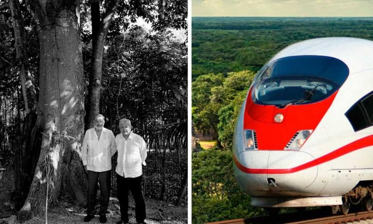 Carlos Slim y AMLO se reúnen para evaluar obras del Tren Maya