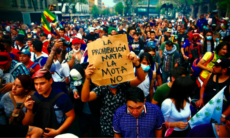 Activistas marchan a favor de la legalización de la marihuana en el país