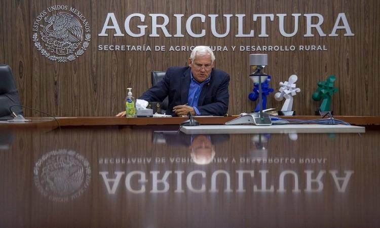 Cervecerías comprarán 500.000 toneladas de cebada a campesinos mexicanos
