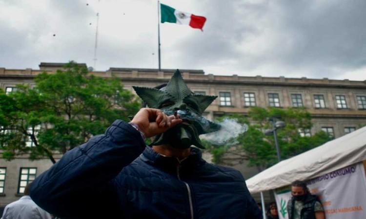 Declarada anticonstitucional la prohibición de marihuana