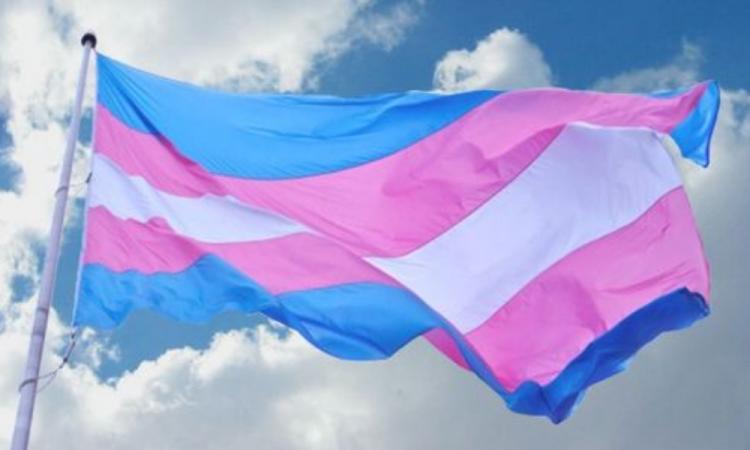 CDH presenta cartilla Personas Transgénero y sus Derechos